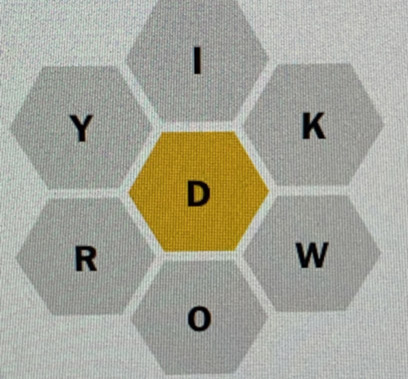 Captured image of Spelling Bee